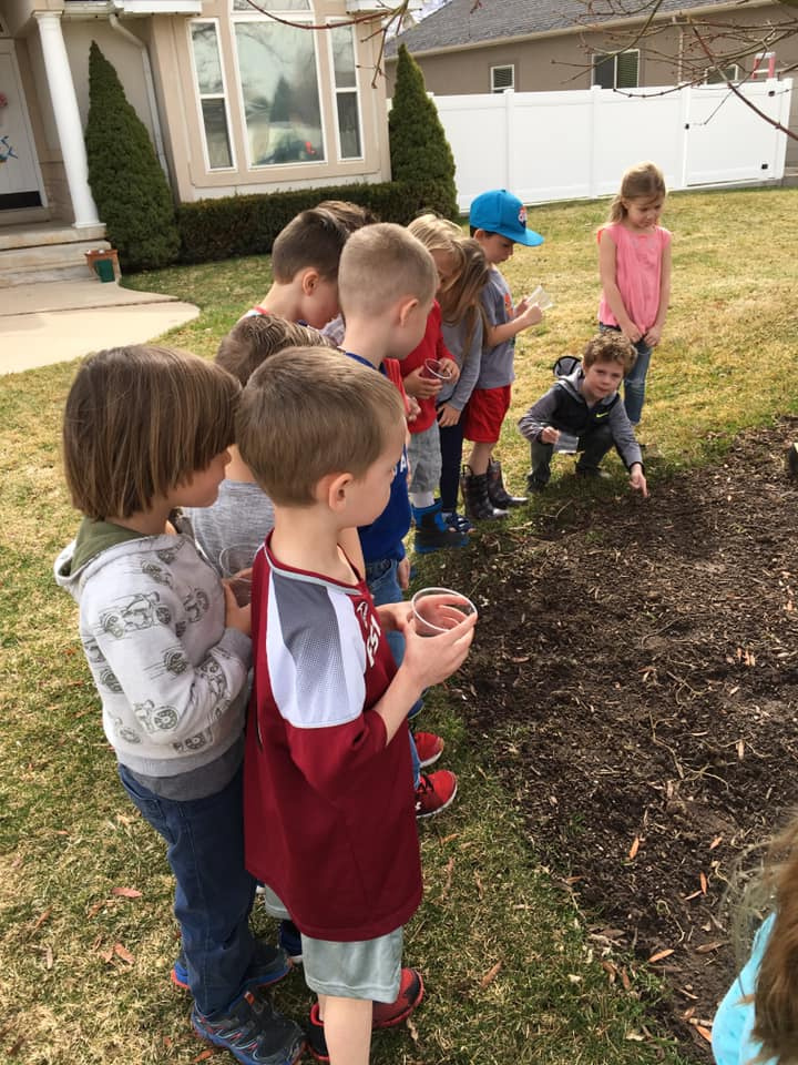 Planting Seeds Activity for Kids