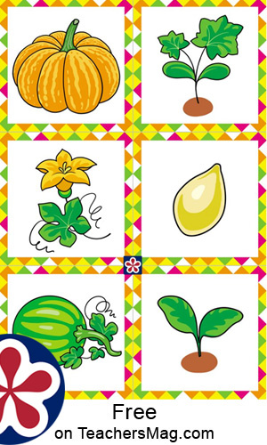 Free Printables Of The Parts And Life Cycle Of A Pumpkin Teachersmag Com