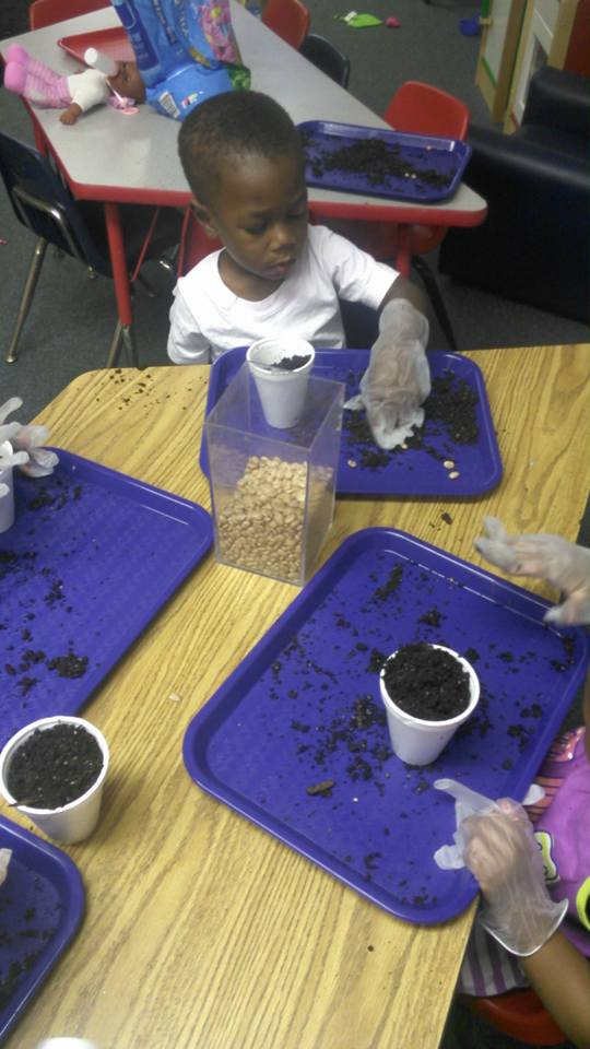 Seed-Planting Activity for Toddlers