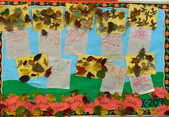Leaf Collage and Leaf Rubbings for Bulletin Board