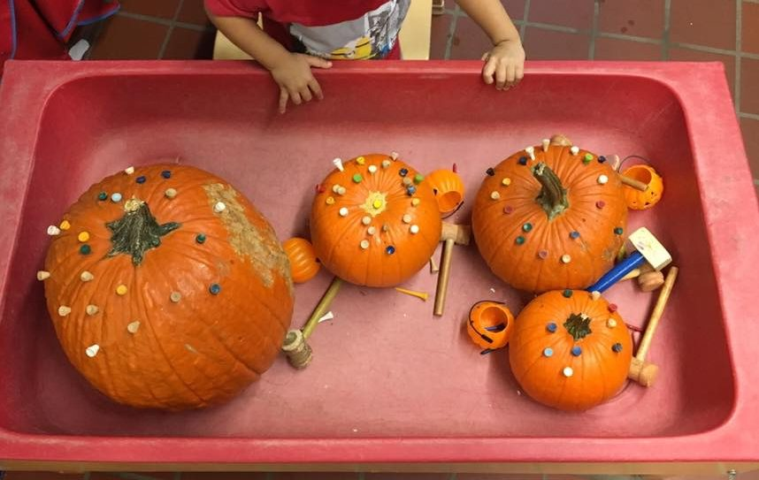 Toddler Fall Theme Ideas For Your Daycare