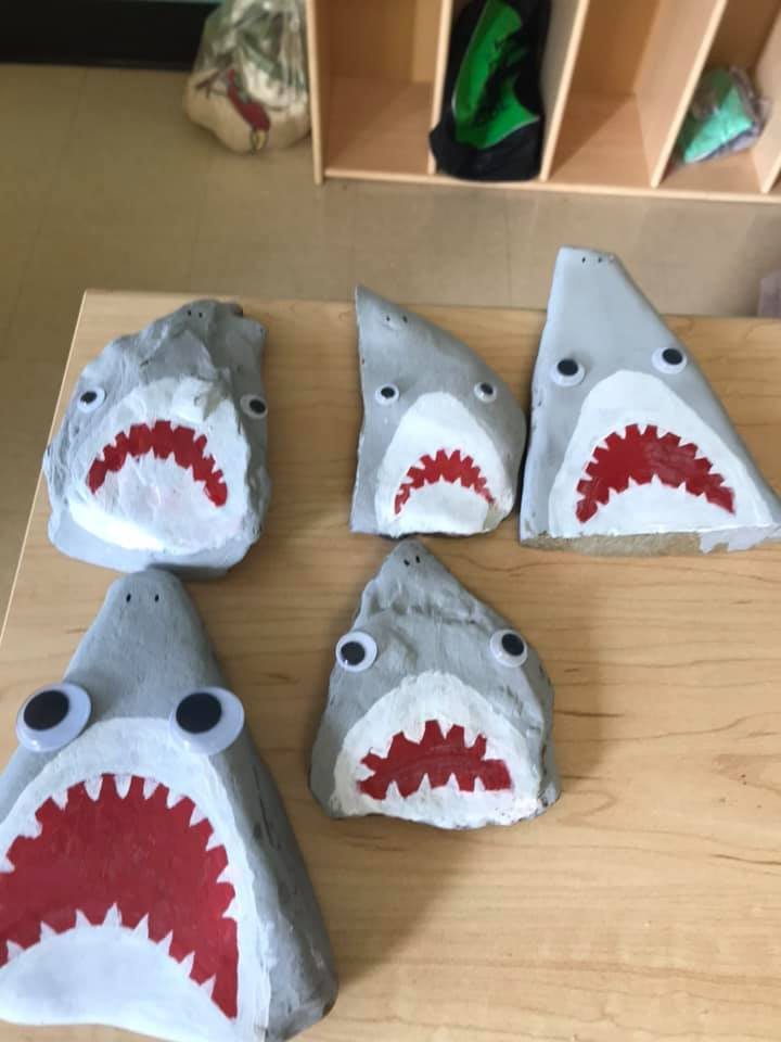 Painted Shark Rock preschool