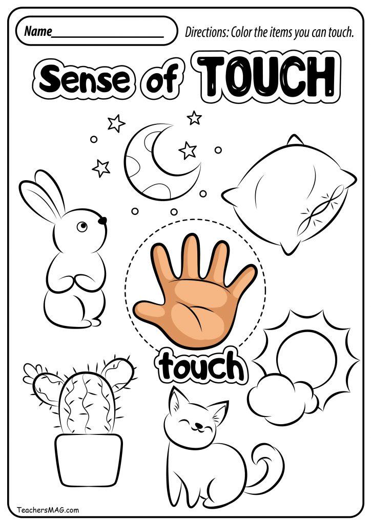 Exploring Your Fingerprints: Preschool Science Activity