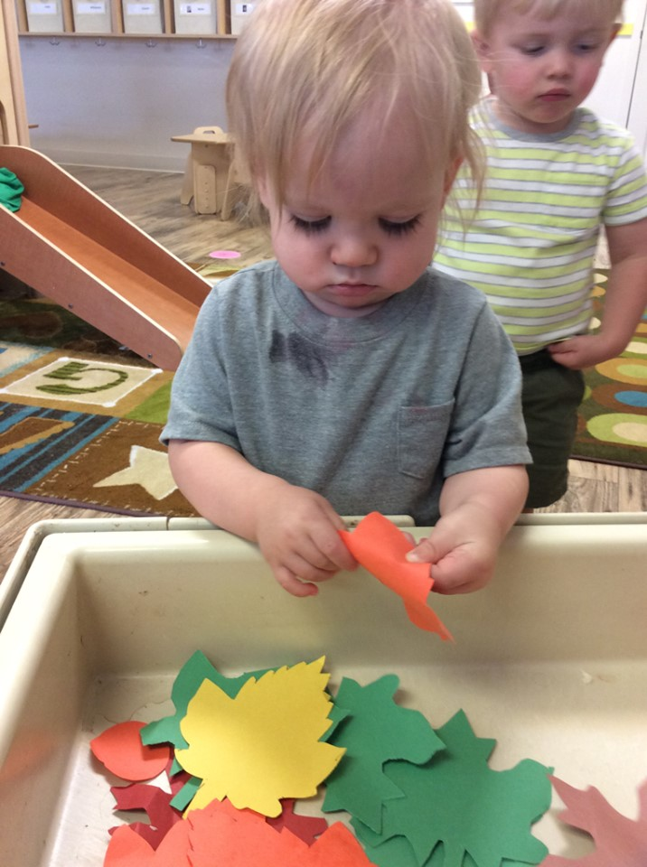 The Best Fall Sensory Bins for Toddlers and Preschoolers