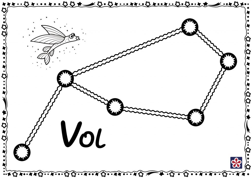 Volans (Vol) Constellation