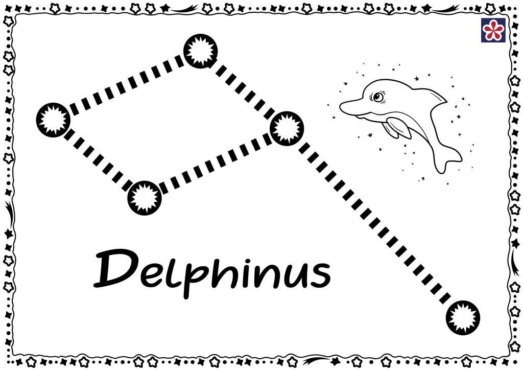 Dolphin (Delphinus) Constellation