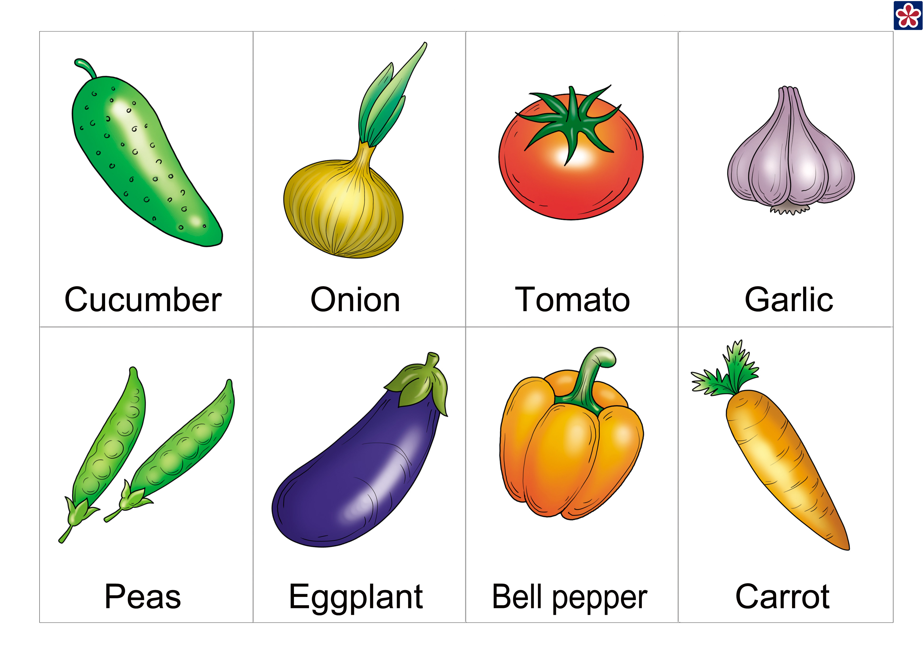 It is an image of Clean Printable Pictures of Vegetables