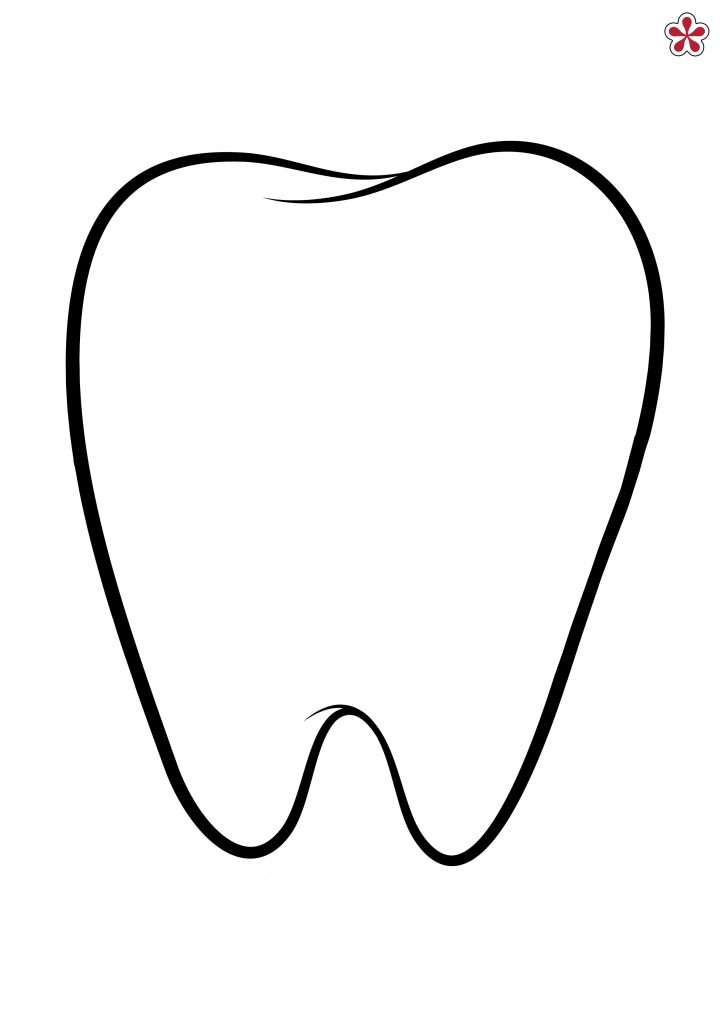 Tooth Template Printable