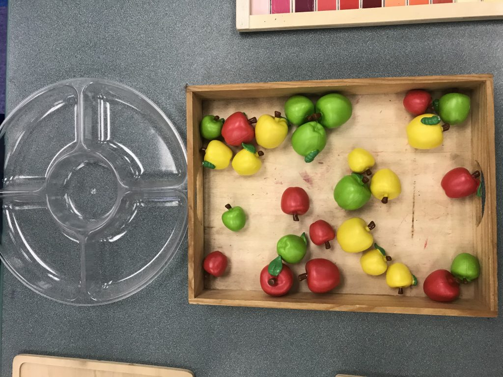 In this activity, the students choose how they will sort the apples