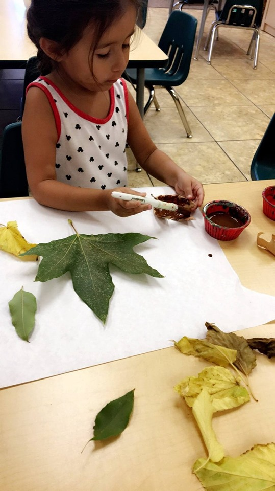 Fun Fall Activities for Preschoolers With Leaves