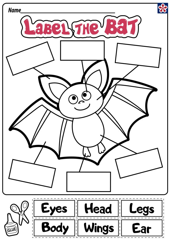 Label the Bat worksheet