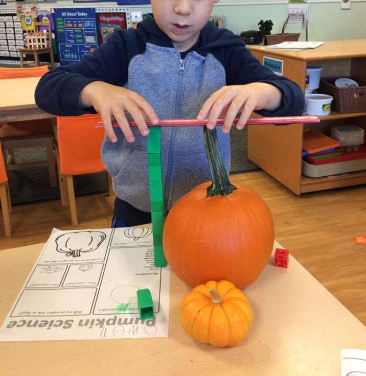 Pumpkin Math and Science for Preschool