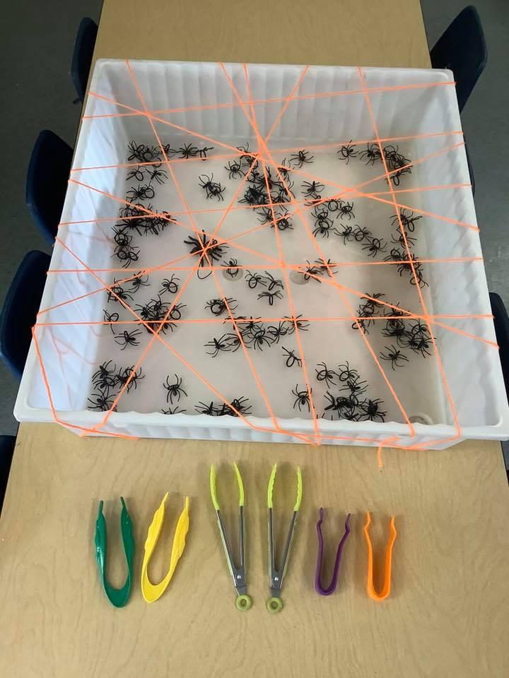 Spider Web Fine Motor Activity