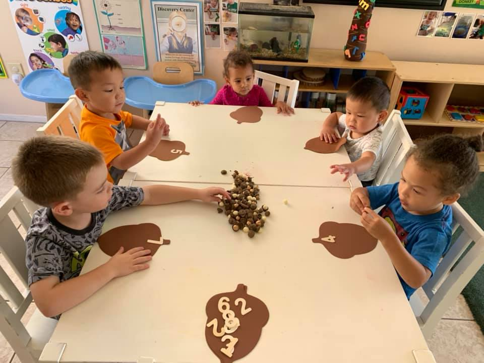 Acorn Counting Activity