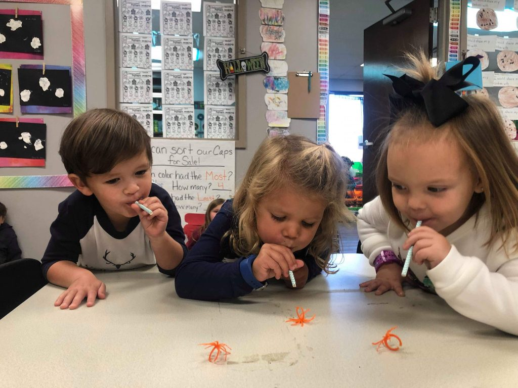 Spiders and Straws Activity