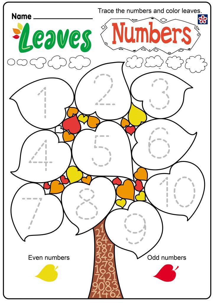 Leaves & Numbers worksheet