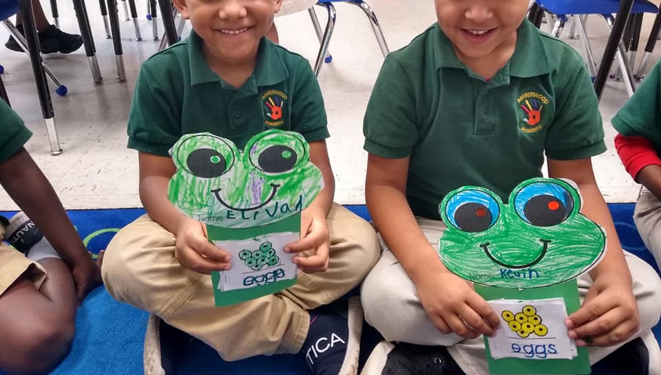 Frog Life-Cycle Book Activity