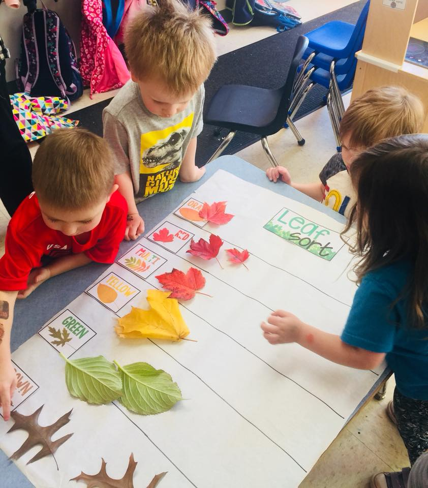 Preschool Leaf Theme Lesson Plan