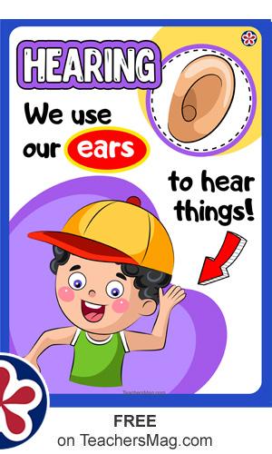 Free Downloadable Senses Poster Set