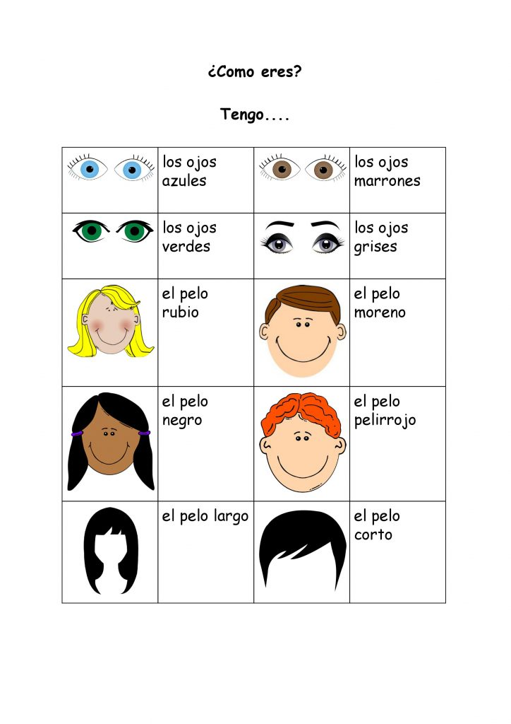 ¿Como eres? Spanish Vocabulary Sheet