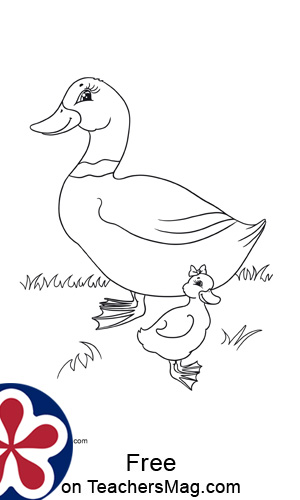 Farm Animals and Their Babies Coloring Pages
