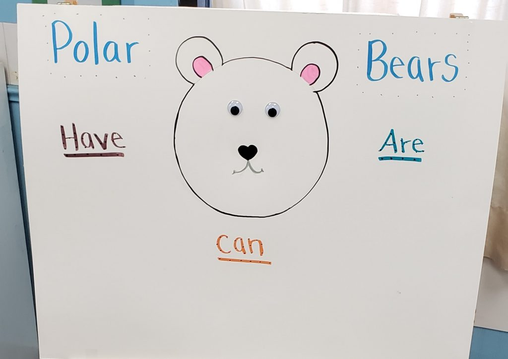"""Learning About Polar Bears With a, """"Can, Have, Are,"""" Chart"""