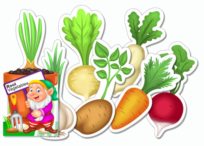 Printable Root Vegetable Activity for Young Children