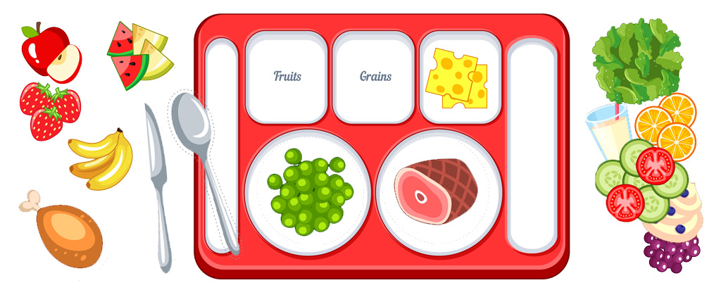 Food Group Sorting Activity: What's On My Plate?