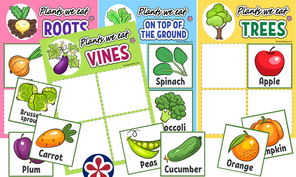 Plants We Eat bingo