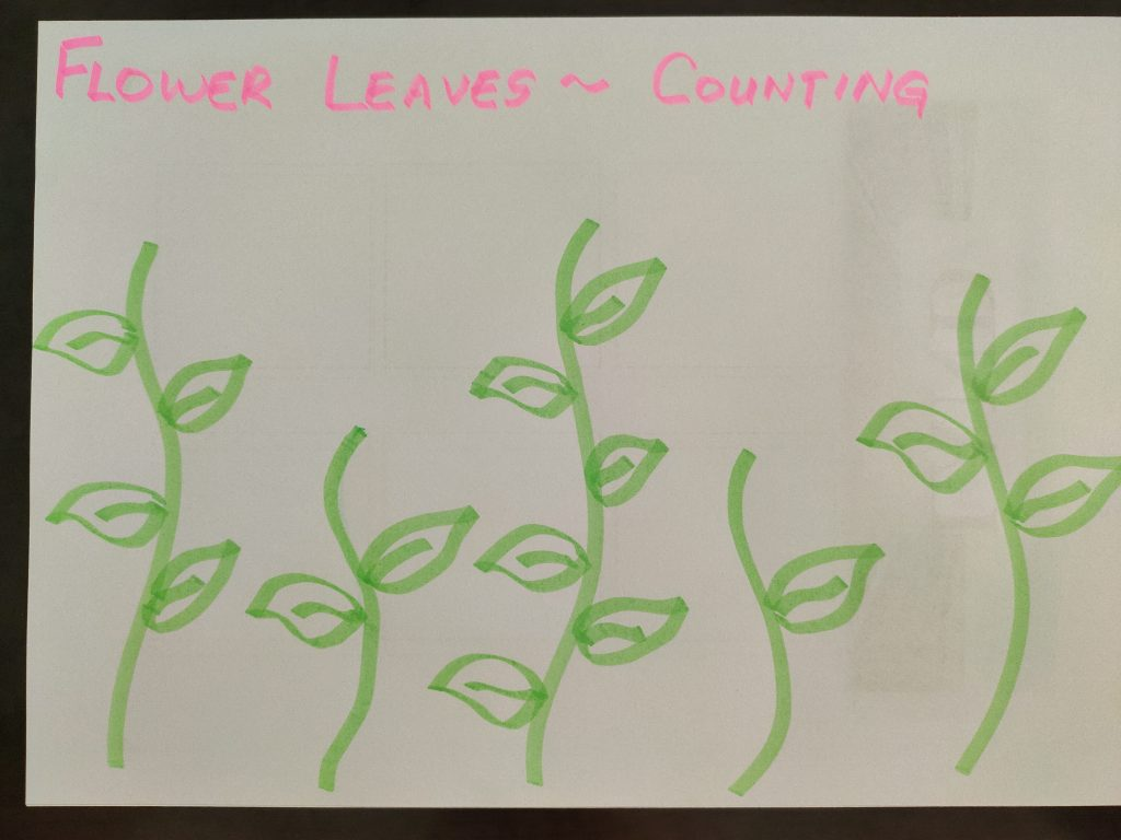 Flower Leaves Counting Activity