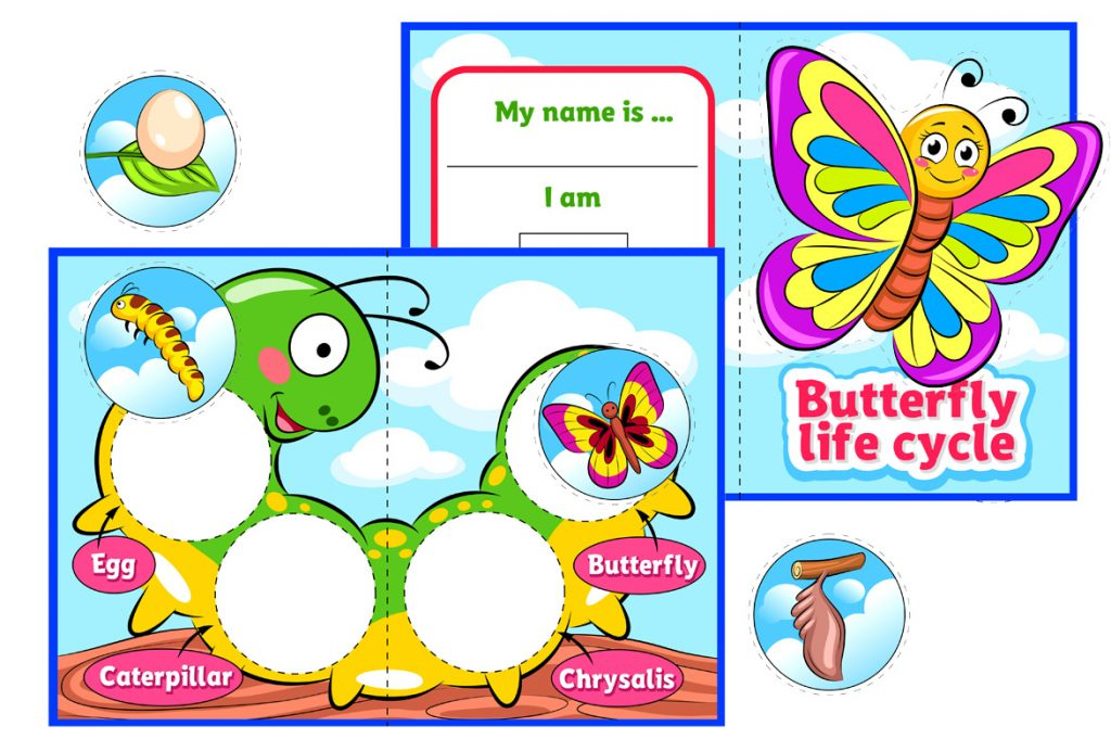 Butterfly Life Cycle Printable Activity For Kids