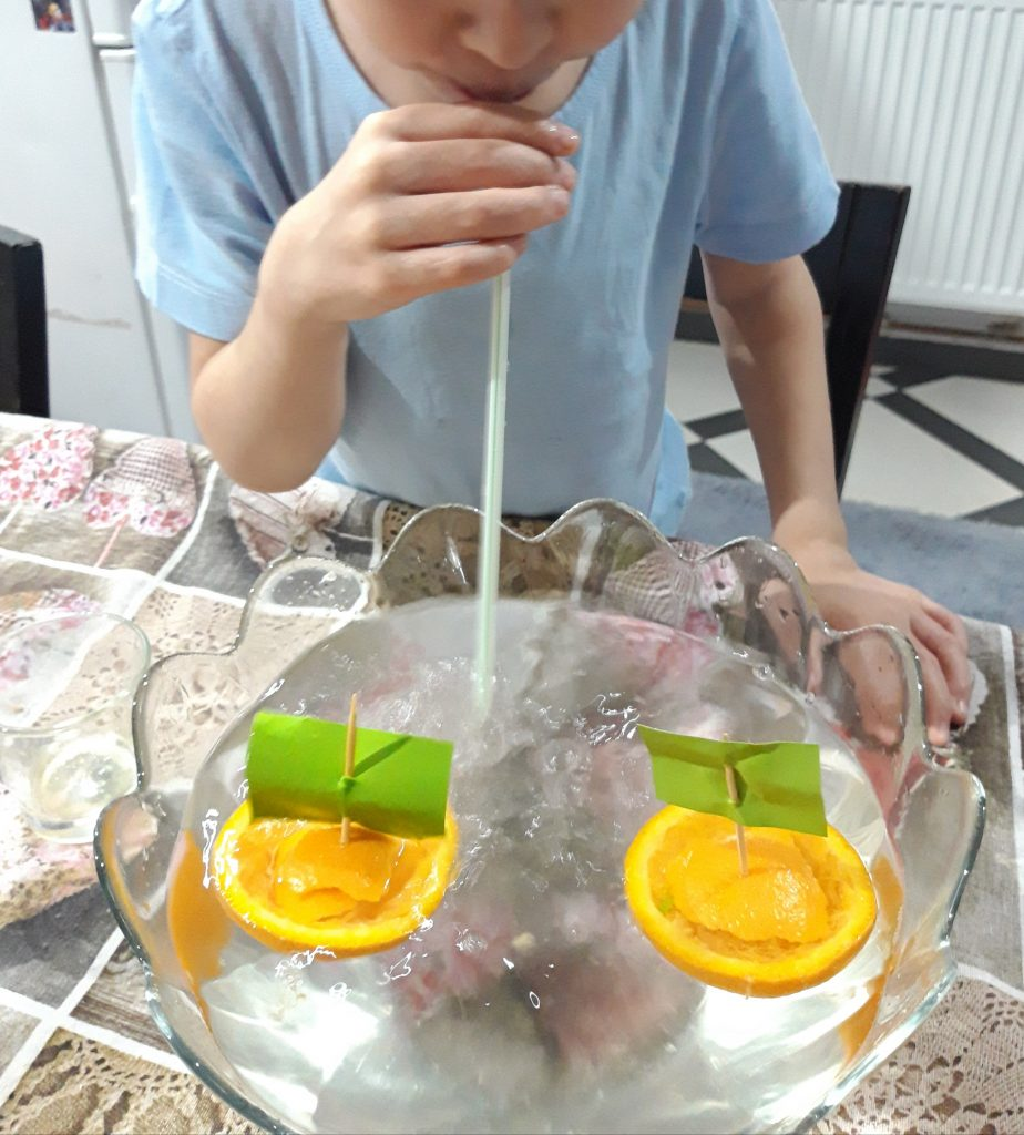 Science Experiment: Sink or Float with Oranges