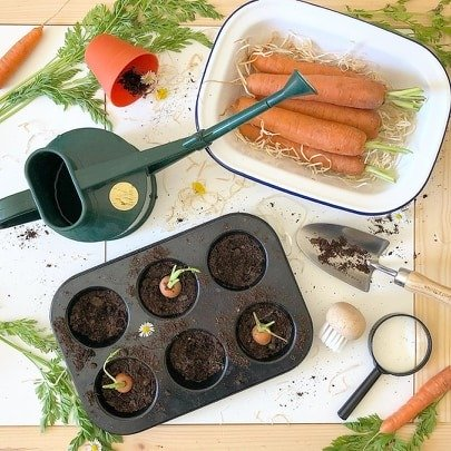 Grow Your Own Carrots With Your Preschooler