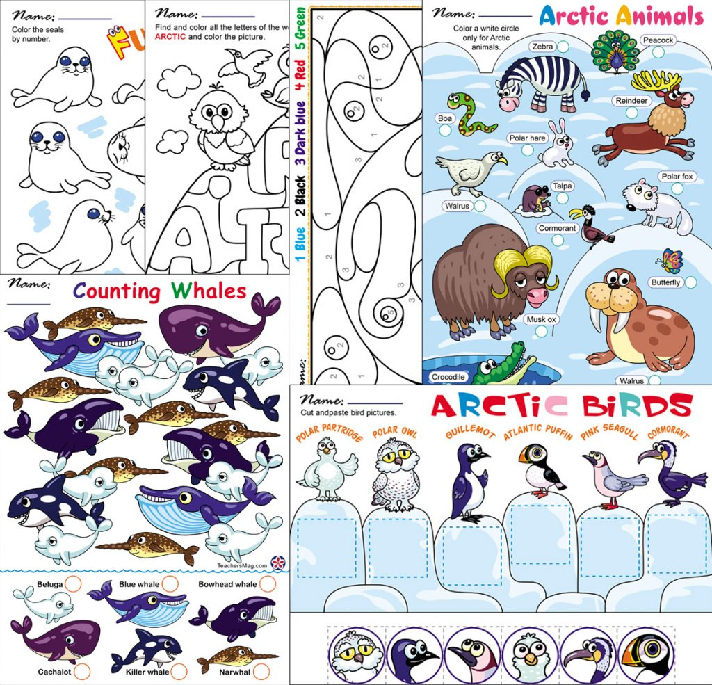 Arctic Animals Worksheets