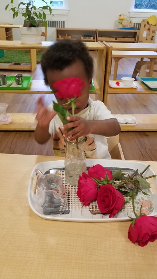 Making a Rose Bouquet